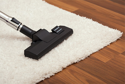 carpet cleaner on an area rug